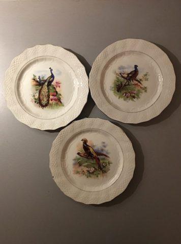 Assiettes Oiseaux - 1 (1)